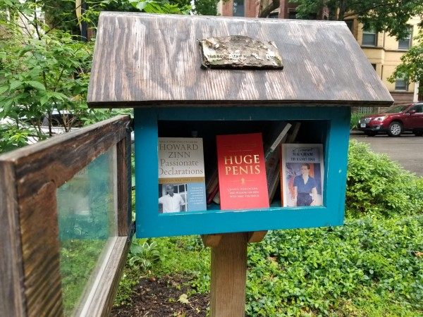 Little Free Library in Edgewater Glen
