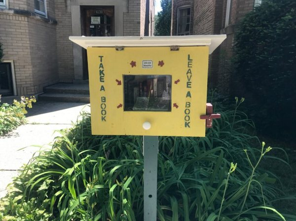 Little Free Library near W. Granville and N. Campbell in Chicago